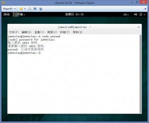 Ubuntu 设置 su 密码